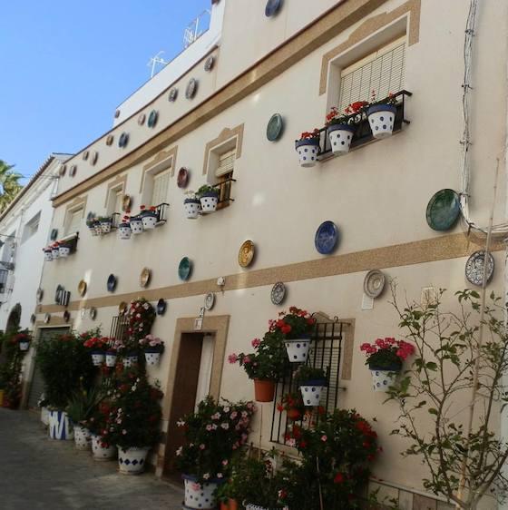 Primer premio en el I Concurso Municipal de Embellecimiento Fachadas, Patios y Rincones