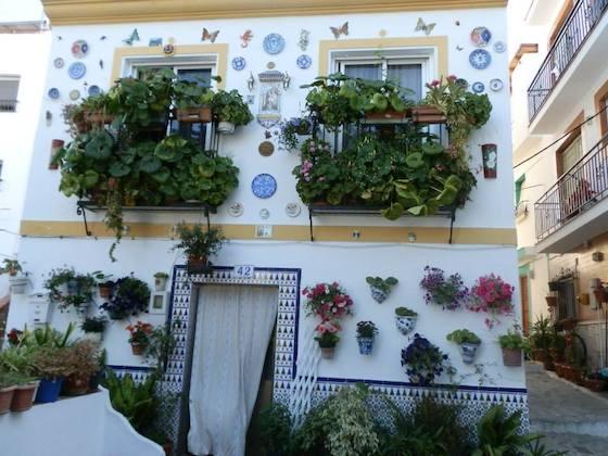 Segundo premio en el I Concurso Municipal de Embellecimiento Fachadas, Patios y Rincones