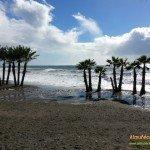 En la Playa de Puerta del Mar el agua llegaba a las palmeras