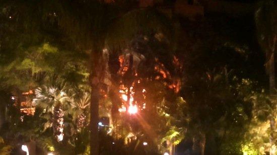 Incendio en El Parque El Majuelo de Almuñécar